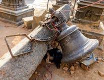 Землетрясения Непала Стоковое Изображение RF