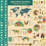 Земледелие, infographics животноводства, Vector illustrationstry графики информации Стоковое Изображение