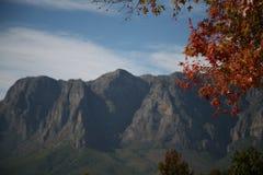 Земли вина накидки, Stellenbosch, s A Стоковая Фотография