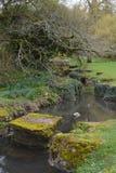 Земли замка марта 2017 St Fagans Стоковое Фото