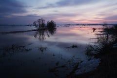 Земли потока на зоре Стоковое Фото