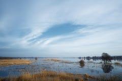 Земли потока Стоковое Фото