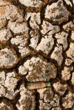 Земля жажды сухая Поверхность планеты чужеземца Стоковые Изображения RF