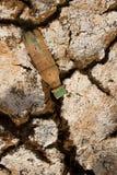 Земля жажды сухая Поверхность планеты чужеземца Стоковое Фото