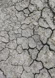 Земля засушлива Стоковые Фотографии RF