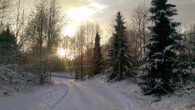 Земля зимы в солнце Стоковая Фотография