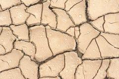 земля испытывающий жажду Стоковое фото RF