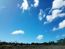 Земля и небо Стоковое фото RF