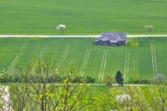 Земля поля весны Стоковая Фотография