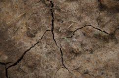 Земля, предпосылка, почва Стоковое Фото