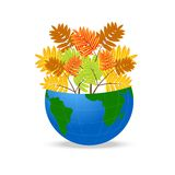 Земля планеты с листьями осени одичалой золы Стоковая Фотография RF