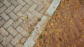 Земля с листьями Стоковые Фотографии RF