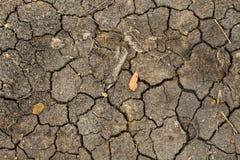 земля треснутая предпосылкой сухая Стоковое Изображение