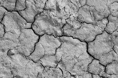 земля треснутая предпосылкой сухая Стоковые Фотографии RF