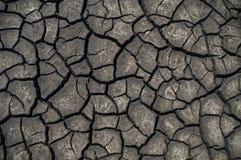 Земля треснутая текстурой Стоковые Изображения
