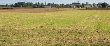 Земля урожая, ландшафт стоковые фотографии rf
