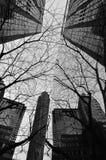 зеркало зданий Стоковое Изображение