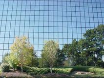 зеркало изображения стоковое изображение