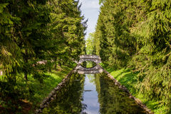 зеркала Стоковая Фотография