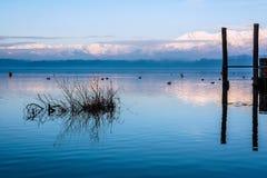 Зеркало воды Стоковые Изображения