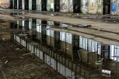 Зеркало в пакостной воде Стоковое Изображение RF