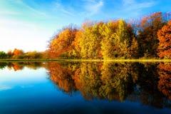 Зеркало осени Стоковое Изображение RF
