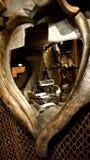 зеркало стоковая фотография