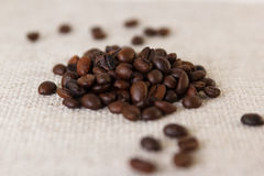 Зерна зажаренного в духовке кофе Стоковое Изображение RF