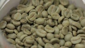 Зерна зеленого кофе акции видеоматериалы