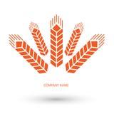 Зерна и пшеница логотипа Стоковые Изображения