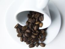 зерна кофейной чашки Стоковые Изображения RF