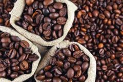 Зерна кофе в сумках Зерна предпосылки кофе Стоковые Изображения