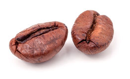 2 зерна кофе на белой предпосылке Стоковое Фото