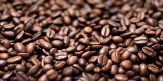 зерна кофе предпосылки близкие изолировали фото вверх по белизне Стоковое фото RF