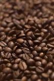 зерна кофе Стоковое Изображение RF