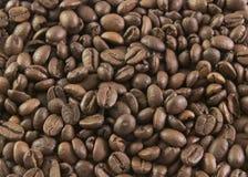 Зерна кофе стоковые изображения