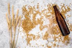 Зерна пивоваренного ячменя около стекла и бутылки пива на сером взгляд сверху предпосылки Стоковое фото RF