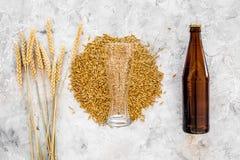 Зерна пивоваренного ячменя около стекла и бутылки пива на сером взгляд сверху предпосылки Стоковая Фотография