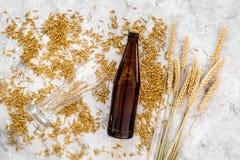 Зерна пивоваренного ячменя около стекла и бутылки пива на сером взгляд сверху предпосылки Стоковые Изображения