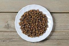 Зерна прополиса внутри плиты, продукта пчелы Стоковые Изображения RF