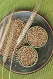 Зерна пшеницы в керамических чашках, колосках пшеницы на задней части зеленого цвета стоковая фотография rf