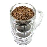 Зерна солода ячменя карамельки в кружке пива стоковая фотография