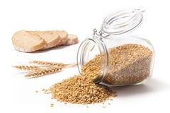 Зерна хлеба пшеницы и пшеницы Стоковые Изображения
