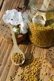 Зерна цветня пчелы в опарнике и деревянной ложке на деревянном столе Продукты пчелы Apitherapy Стоковое Изображение RF