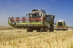зернокомбайны земледелия Стоковое Изображение