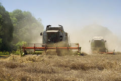 зернокомбайны земледелия стоковая фотография rf