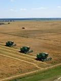Зернокомбайны на работе Стоковое фото RF
