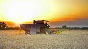 Зернокомбайн жать на заходе солнца - видео запаса. видеоматериал