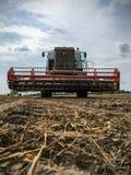 Зернокомбайн жать на поле фермы Стоковое Изображение