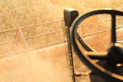 Зернокомбайн жать поле Стоковые Изображения
